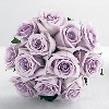 wedding_officiant_bridal_bouquet_lavender_roses
